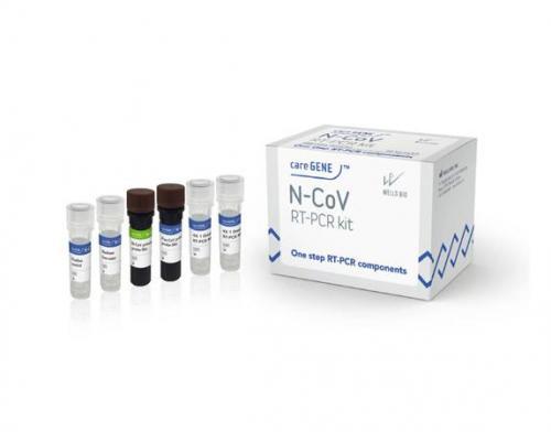 RT-PCR Tests Kits